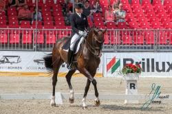 Dorothee Schneider (GER) mit Faustus 94 vom Frankf.Turnierst.Schw.Gelb e.V PREIS DER HUBERT NABBE GMBH 23.08.2018